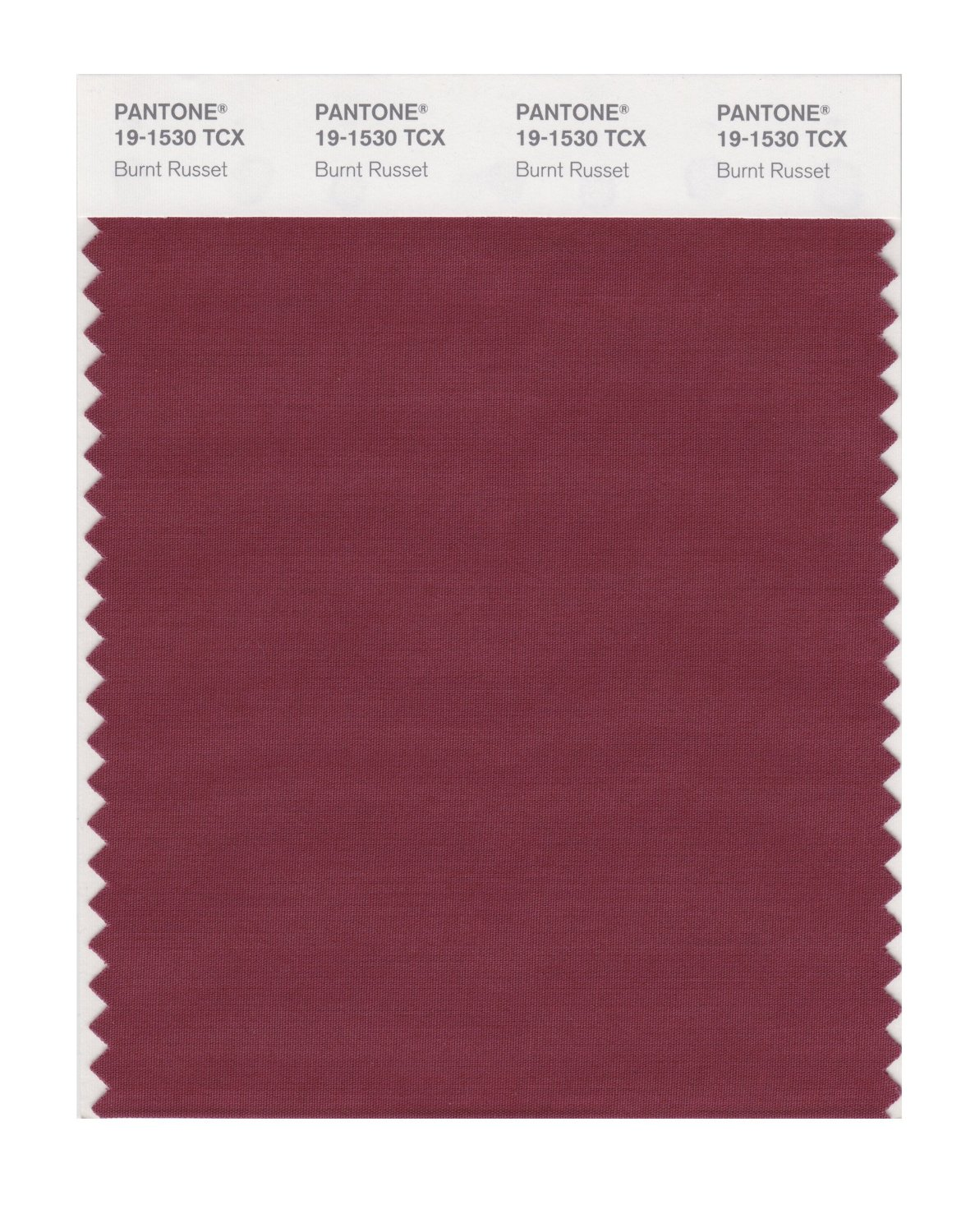 Pantone Smart Swatch 19-1530 Burnt Russet