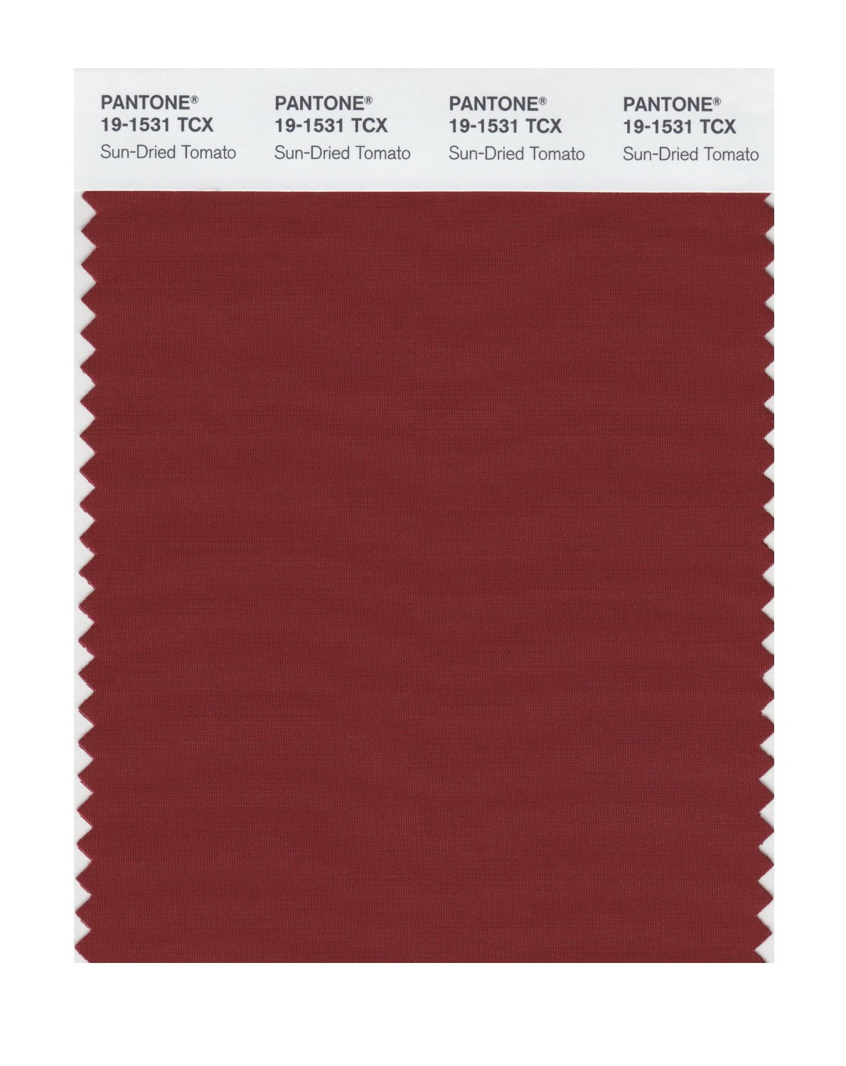 Pantone Smart Swatch 19-1531 Sun-Dried Tomato