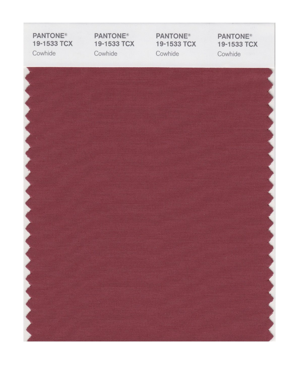 Pantone Smart Swatch 19-1533 Cowhide