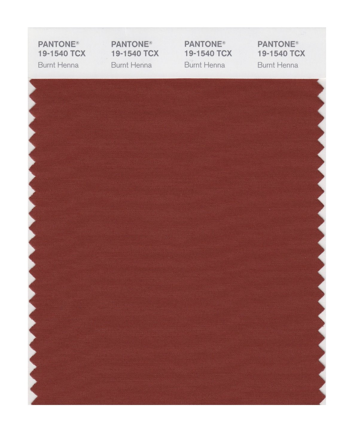 Pantone Smart Swatch 19-1540 Burnt Henna
