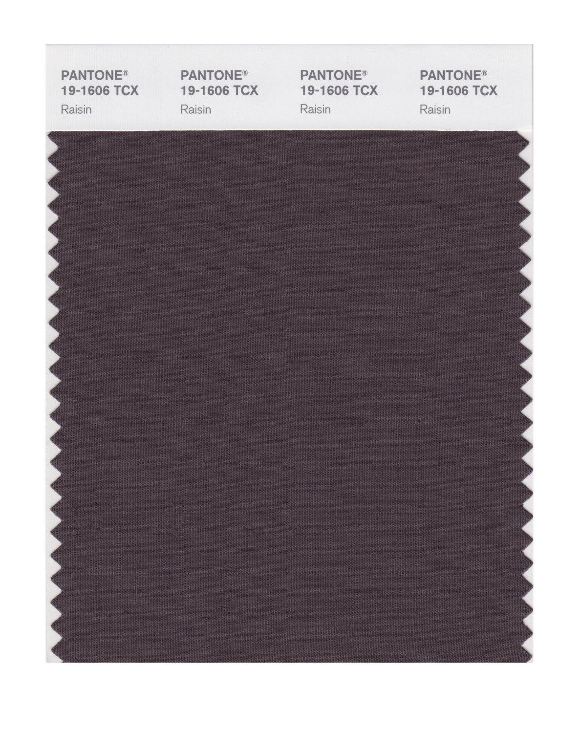 Pantone Smart Swatch 19-1606 Raisin