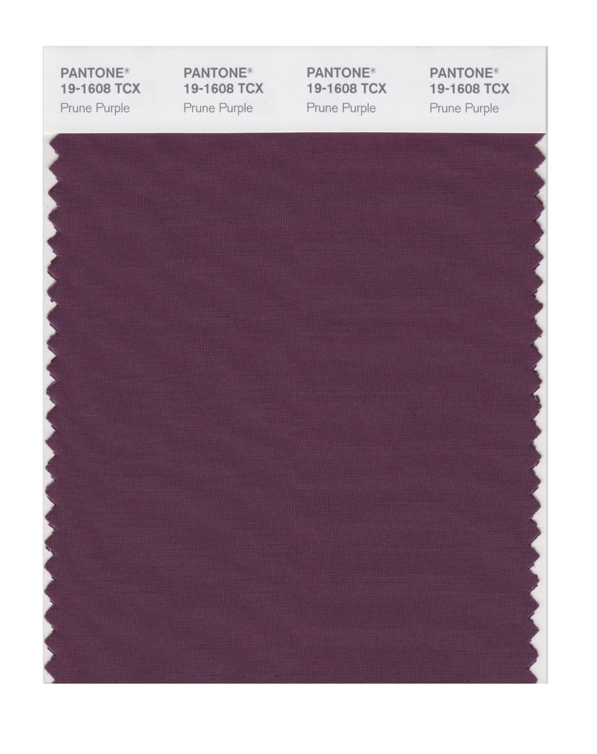 Pantone Smart Swatch 19-1608 Prune Purple
