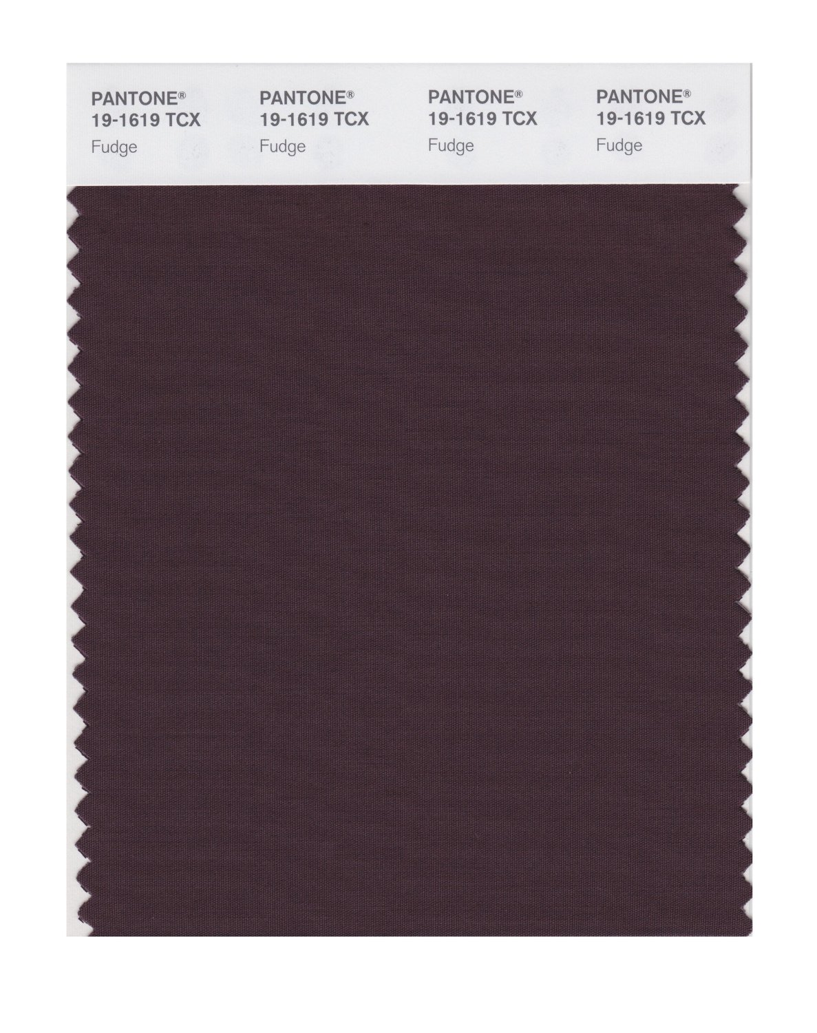 Pantone Smart Swatch 19-1619 Fudge