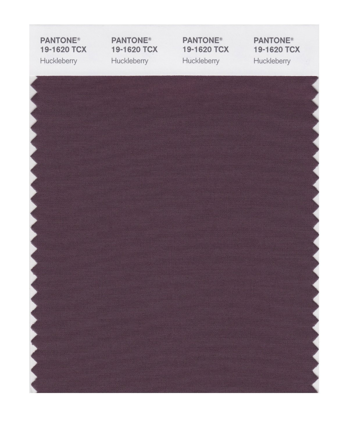 Pantone Smart Swatch 19-1620 Huckleberry