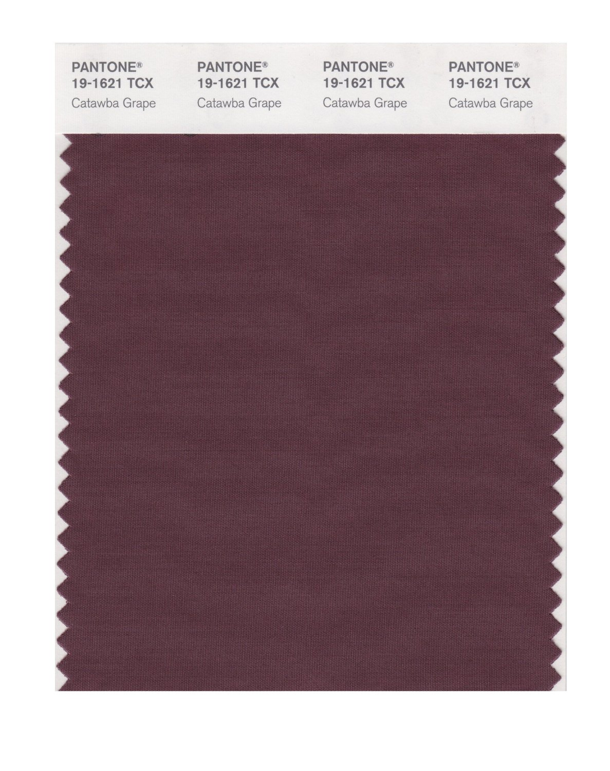 Pantone Smart Swatch 19-1621 Catawba Grape