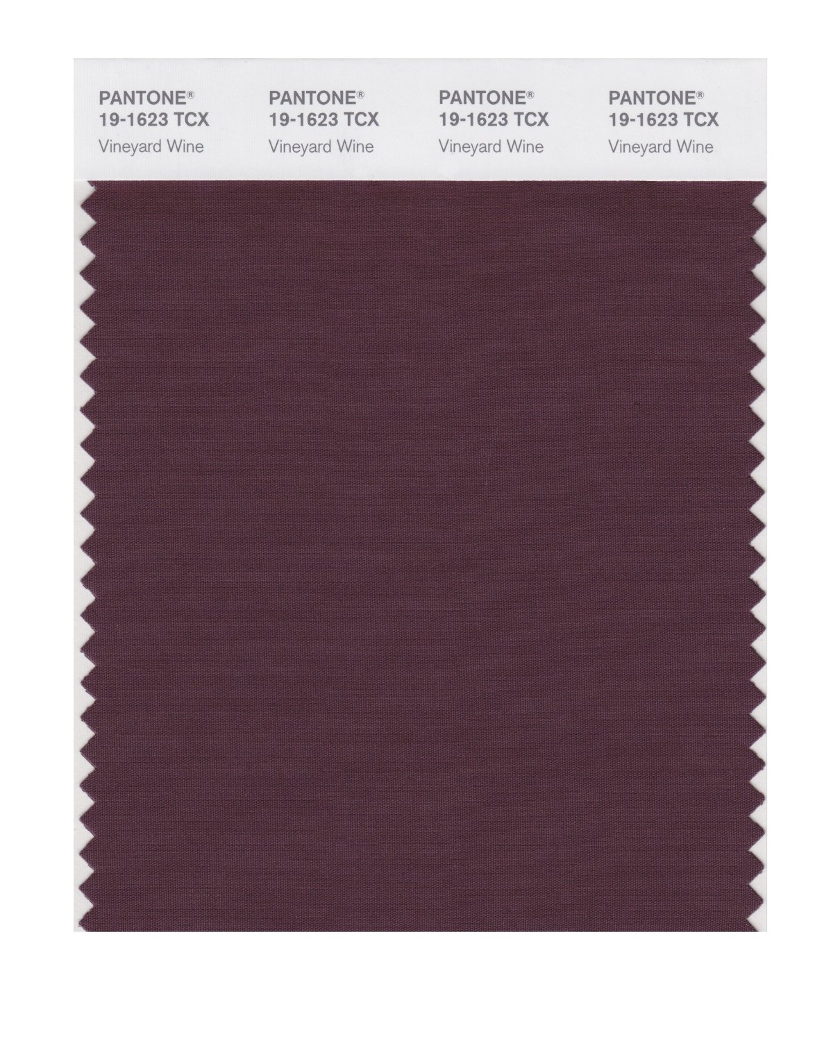 Pantone Smart Swatch 19-1623 Vineyrd Wine