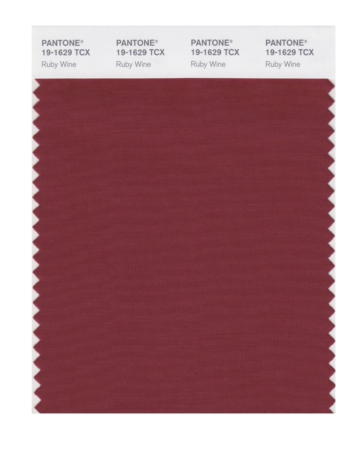 Pantone Smart Swatch 19-1629 Ruby Wine