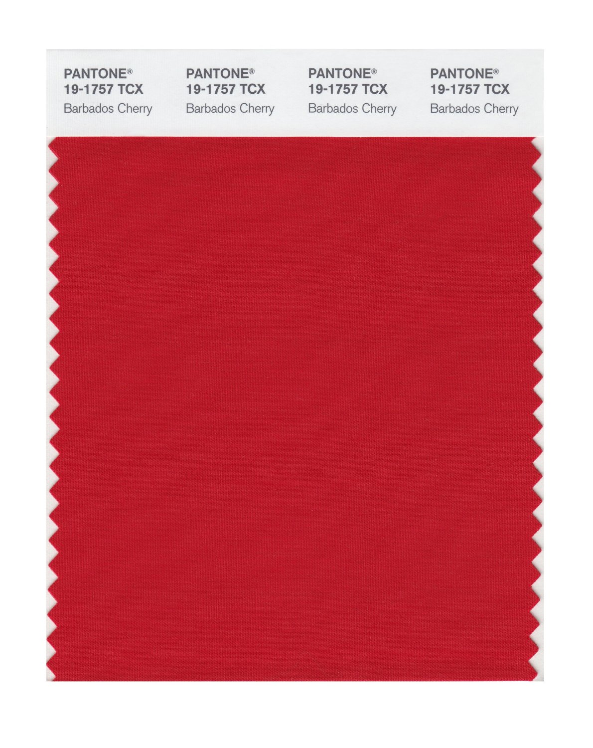 Pantone Smart Swatch 19-1757 Barbados Cherry