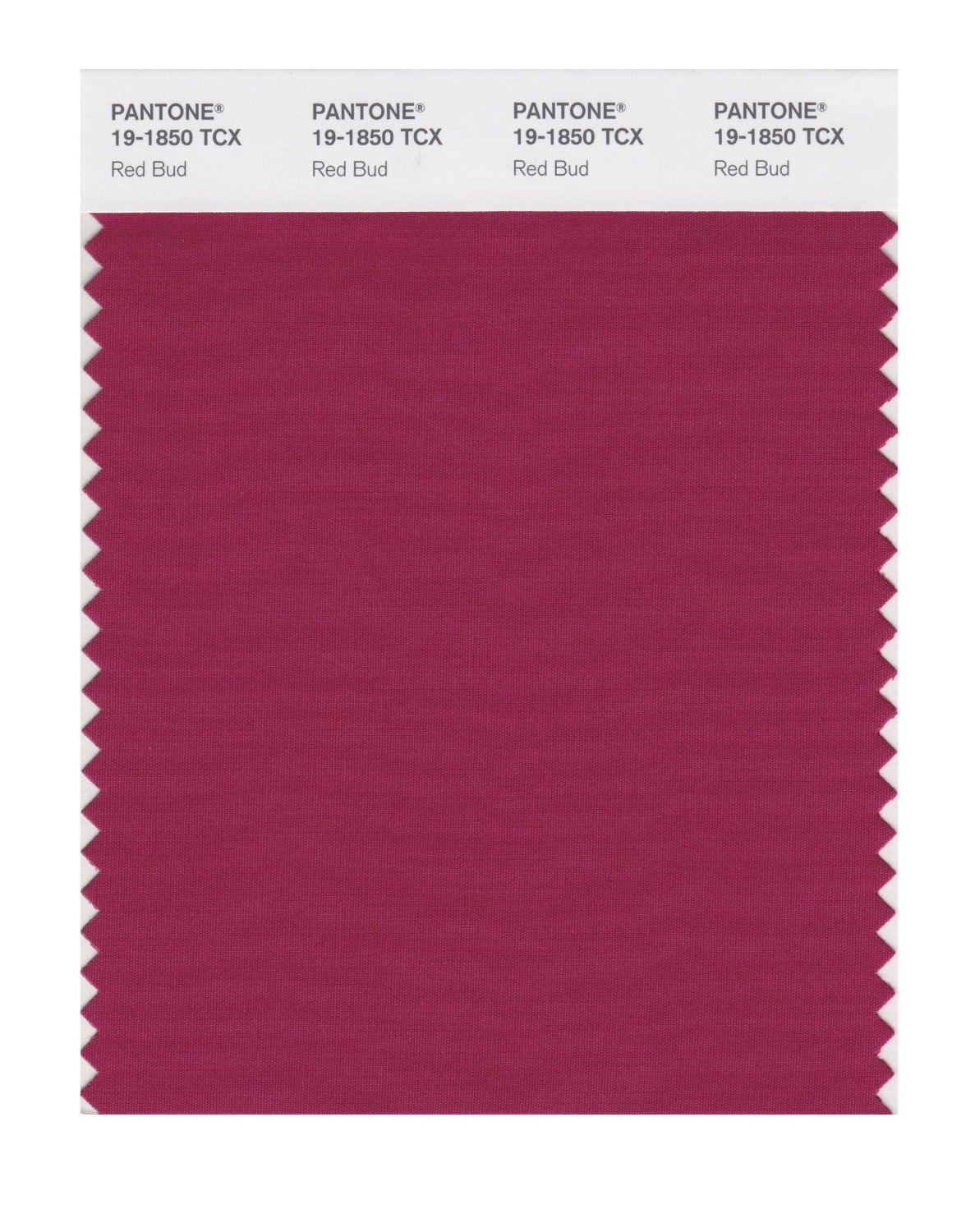 Pantone Smart Swatch 19-1850 Red Bud