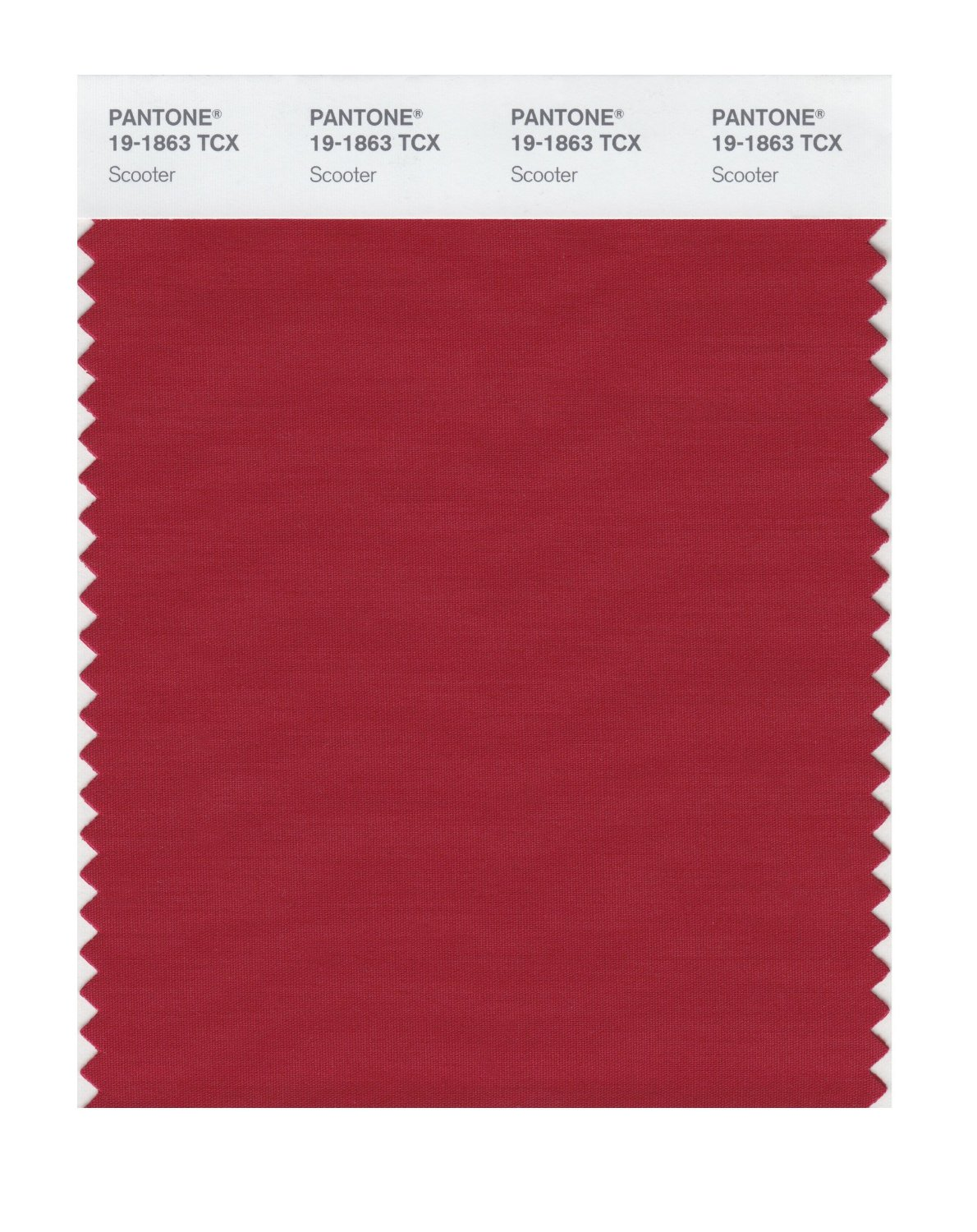 Pantone Smart Swatch 19-1863 Scooter
