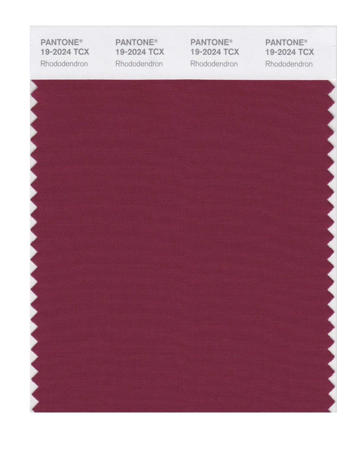 Pantone Smart Swatch 19-2024 Rhododendron