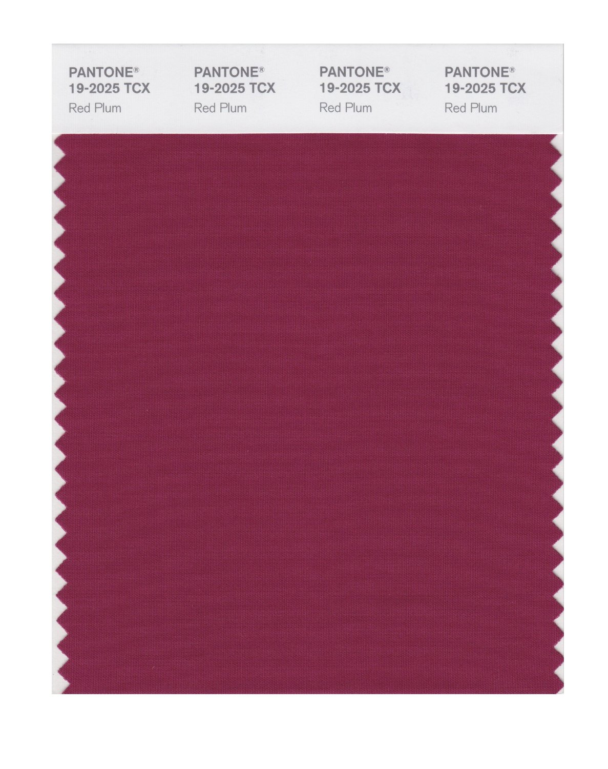 Pantone Smart Swatch 19-2025 Red Plum
