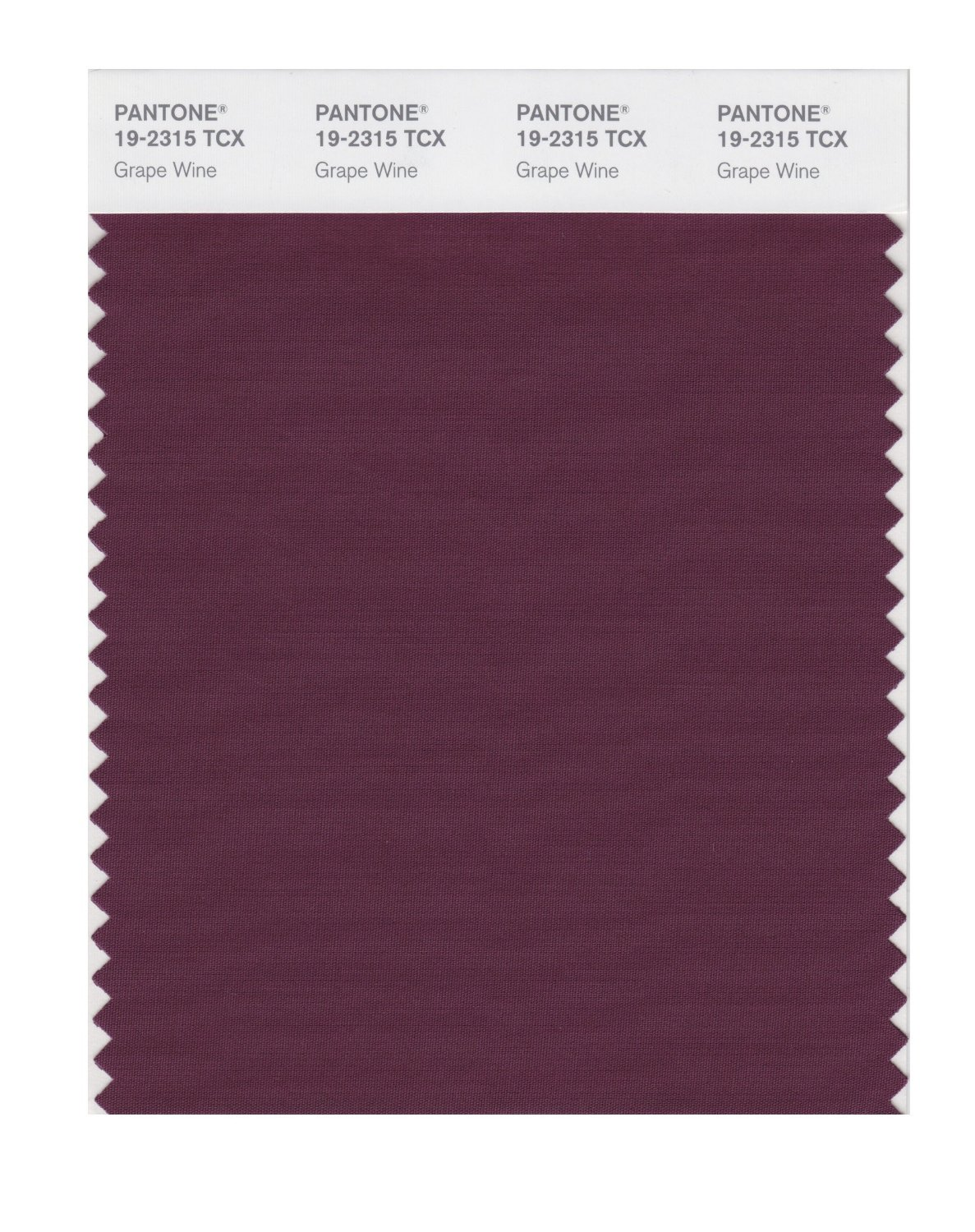 Pantone Smart Swatch 19-2315 Grape Wine