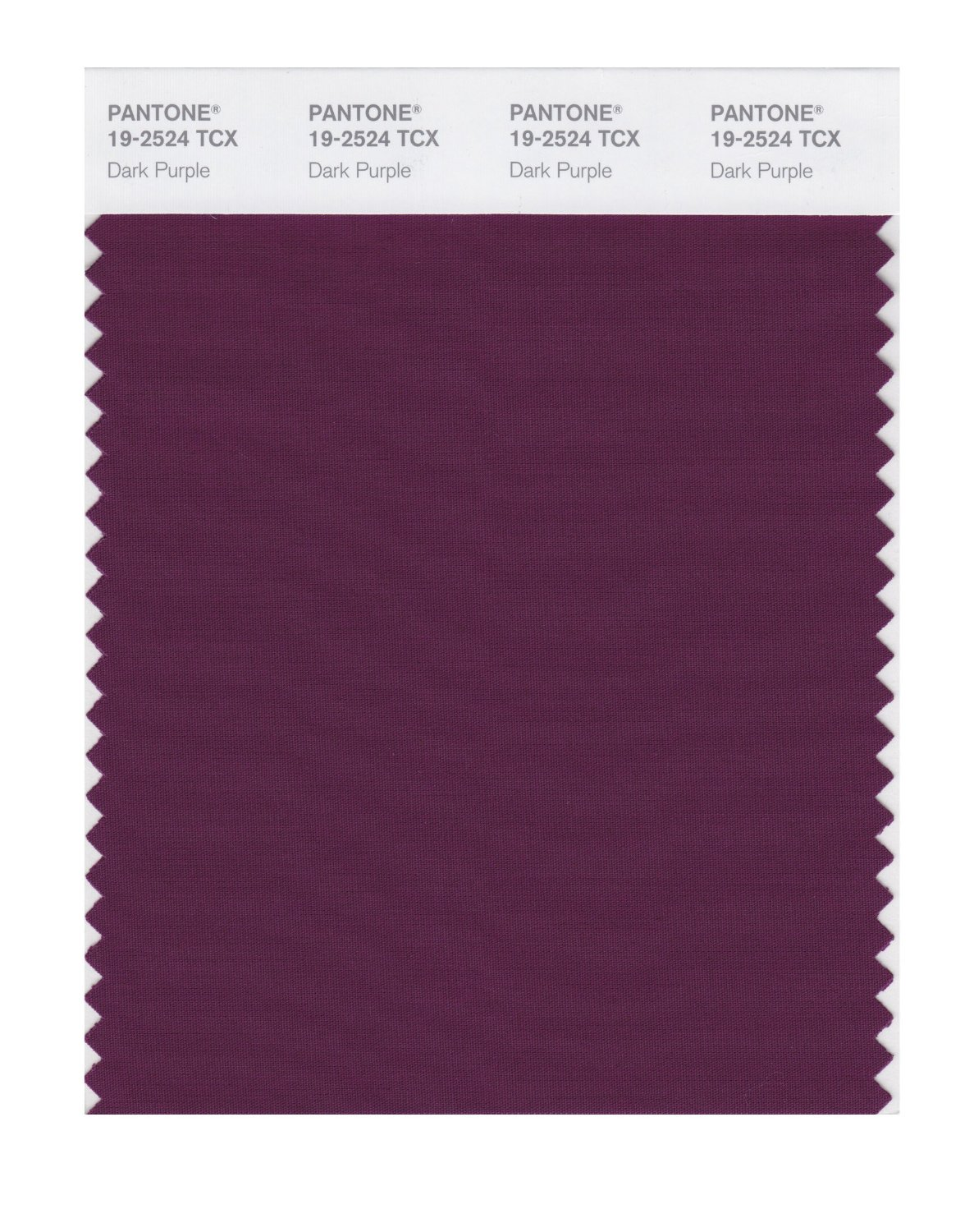 Pantone Smart Swatch 19-2524 Dark Purple