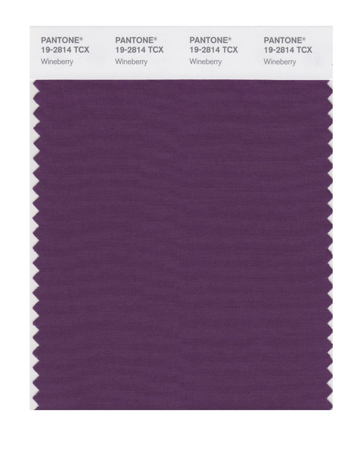 Pantone Smart Swatch 19-2814 Wineberry