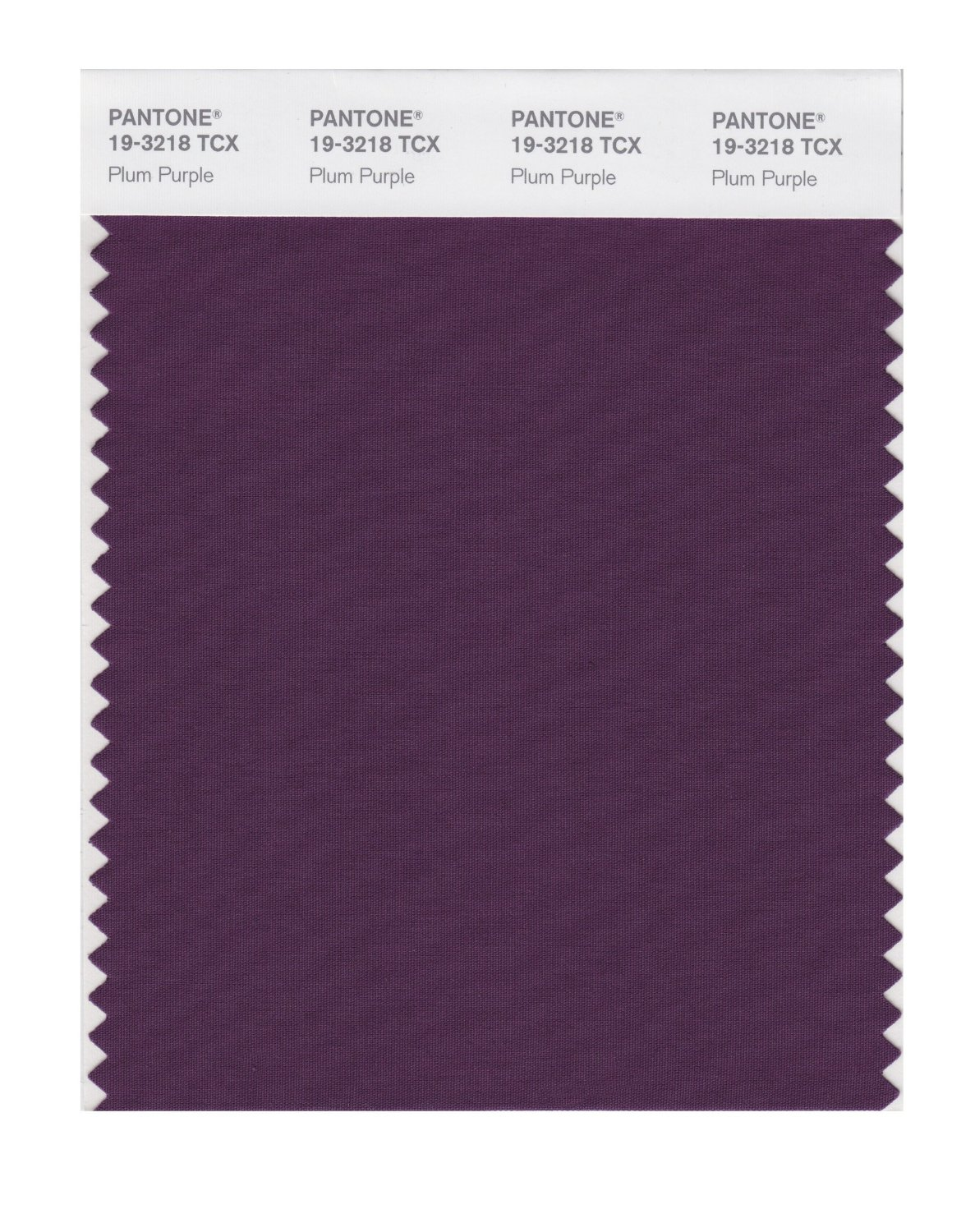 Pantone Smart Swatch 19-3218 Plum Purple