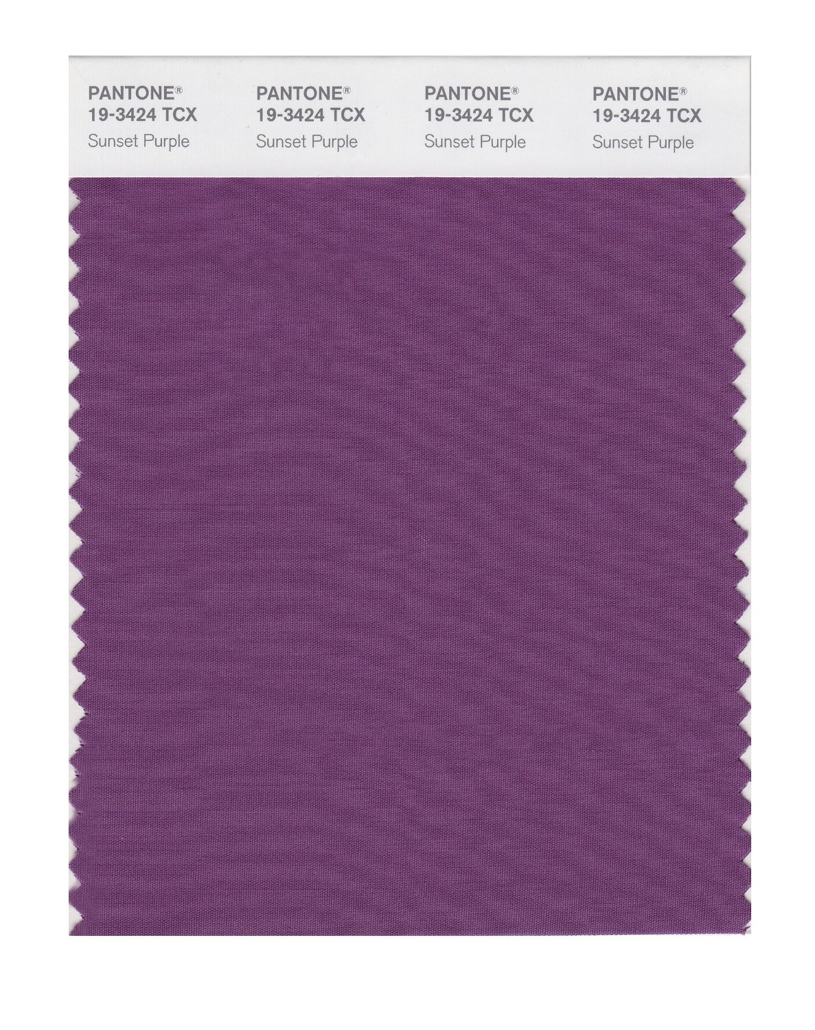Pantone Smart Swatch 19-3424 Sunset Purple