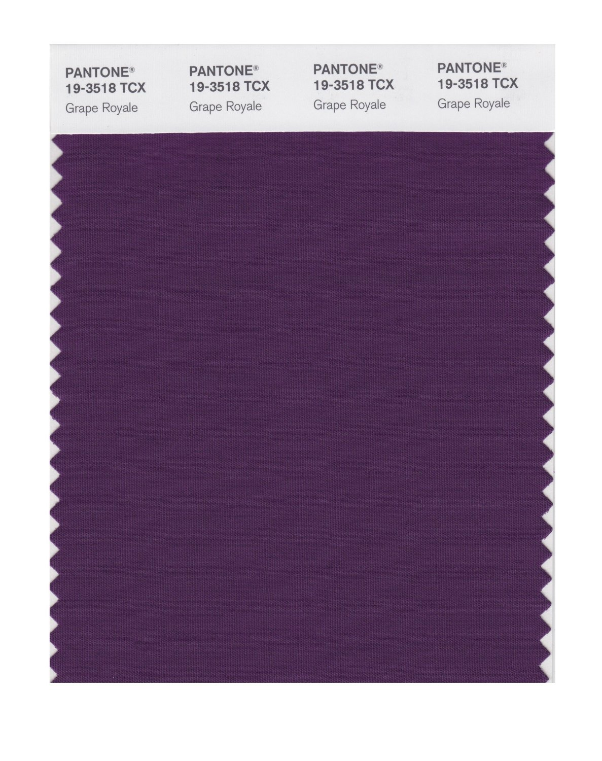 Pantone Smart Swatch 19-3518 Grape Royale