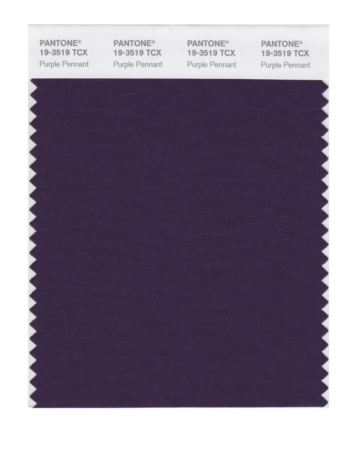 Pantone Smart Swatch 19-3519 Purple Pennant