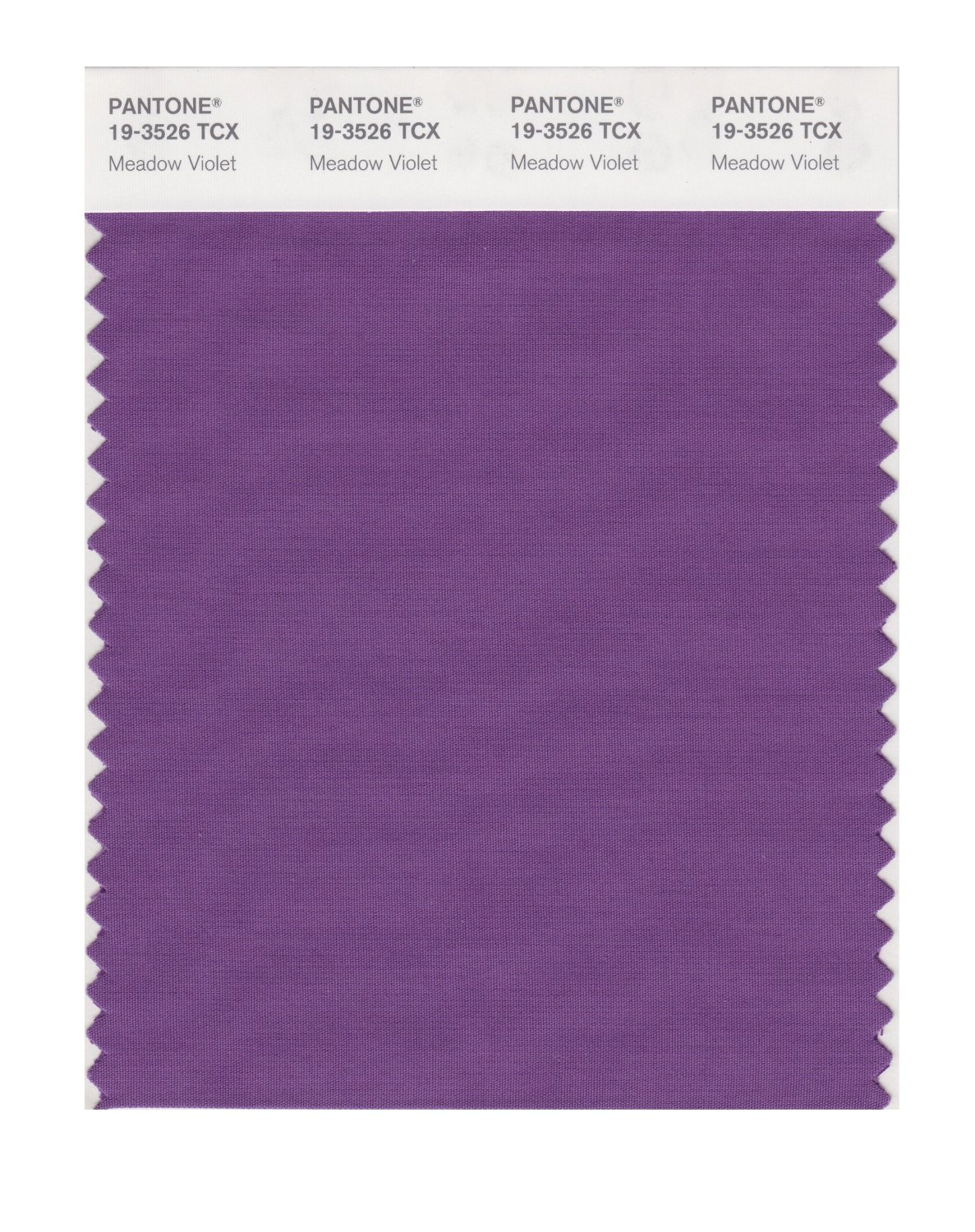 Pantone Smart Swatch 19-3526 Meadow Violet