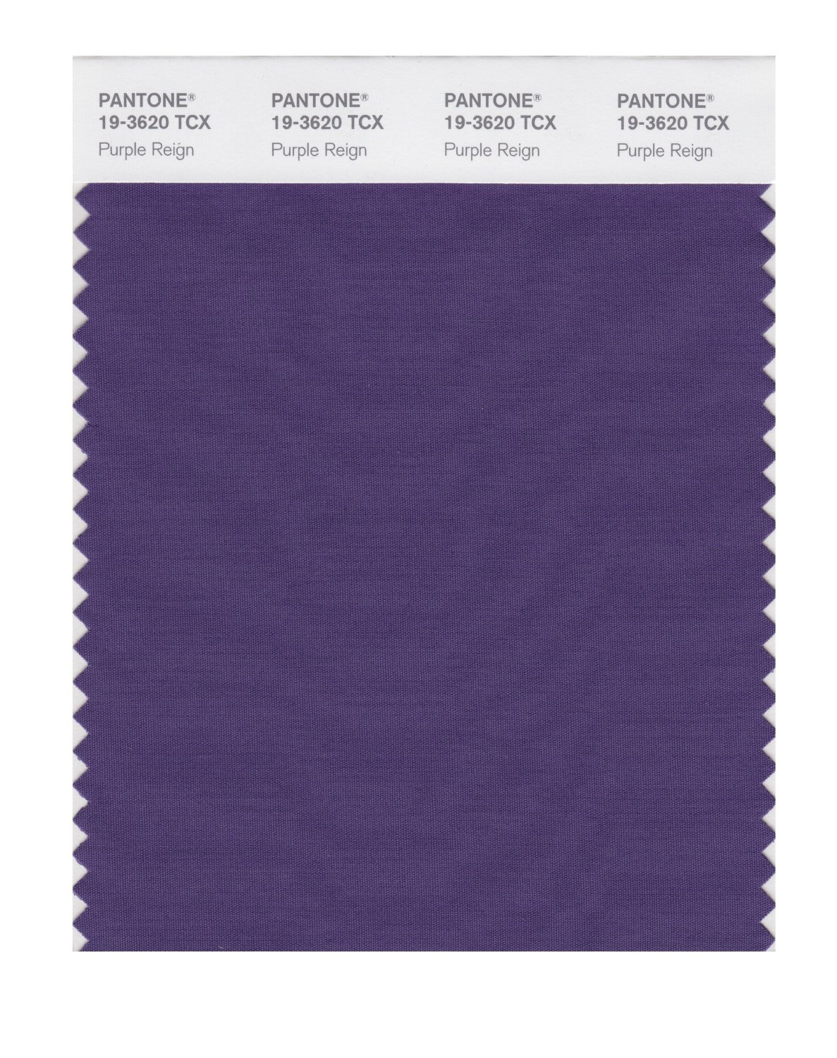 Pantone Smart Swatch 19-3620 Purple Reign