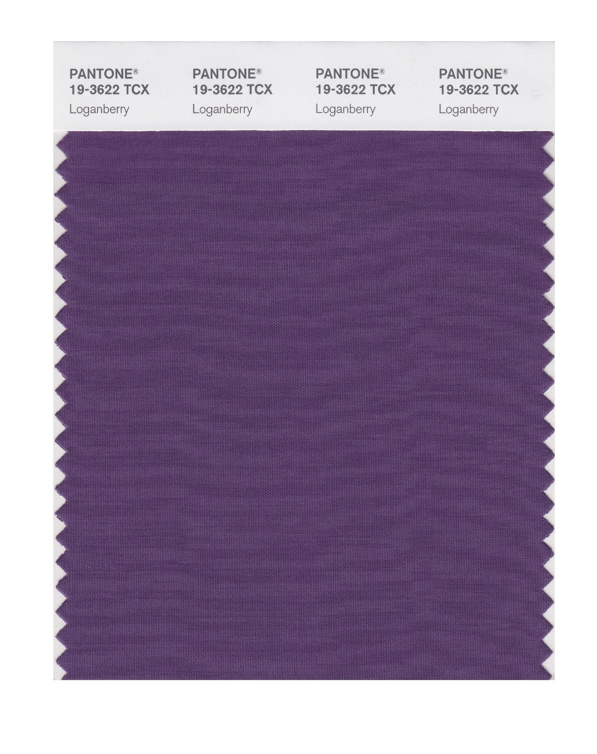 Pantone Smart Swatch 19-3622 Loganberry