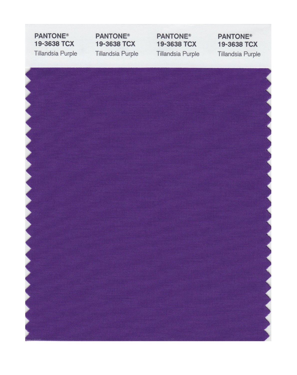Pantone Smart Swatch 19-3638 Tillandsia Purpl