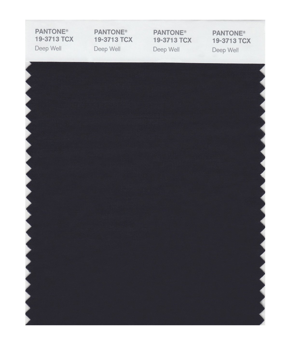 Pantone Smart Swatch 19-3713 Deep Well