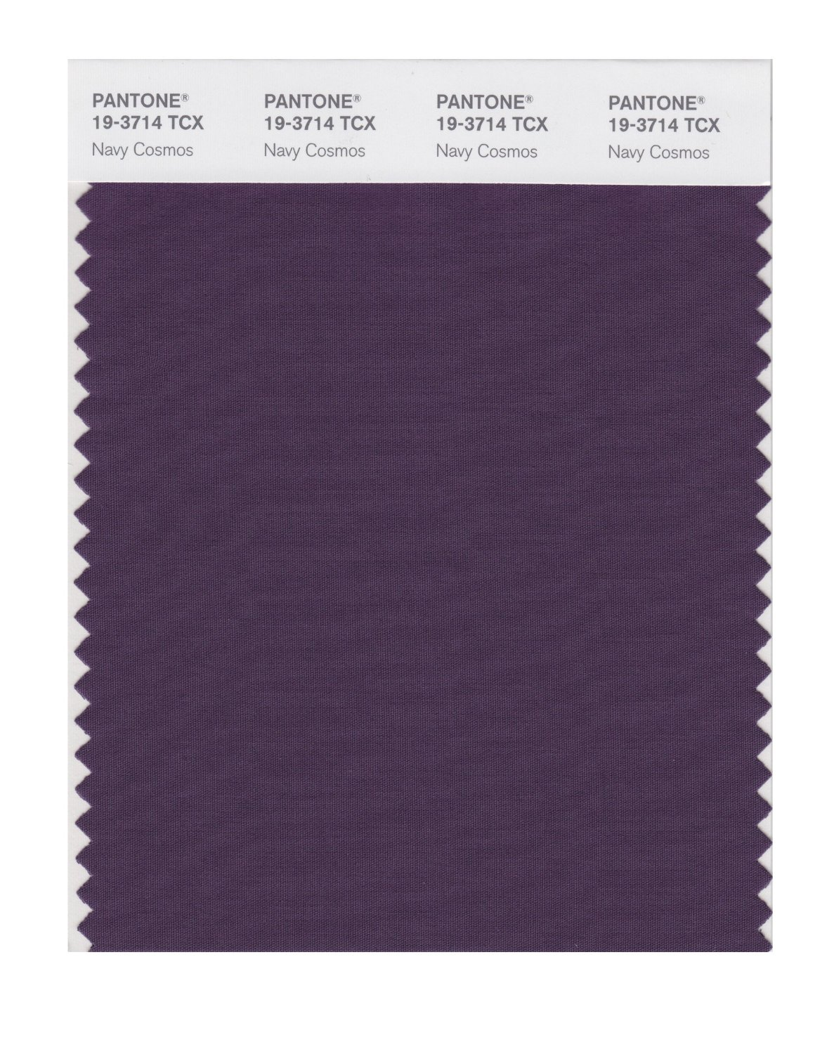 Pantone Smart Swatch 19-3714 Navy Cosmos