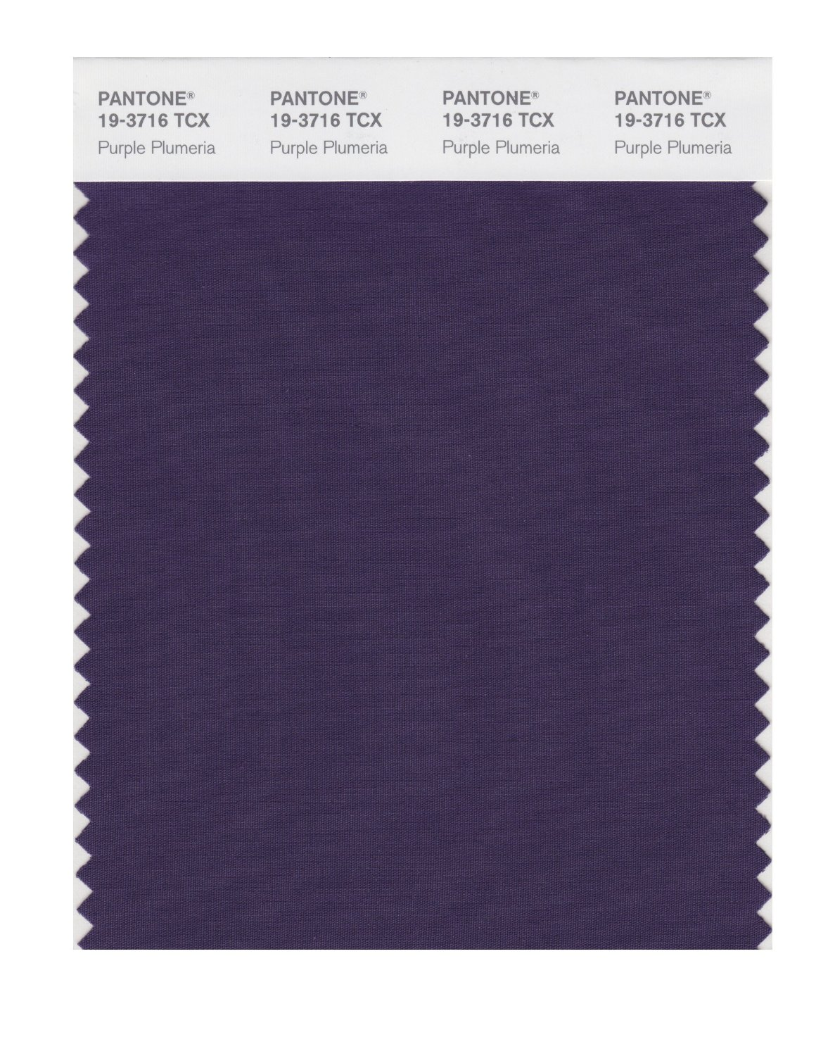 Pantone Smart Swatch 19-3716 Purple Plumeria