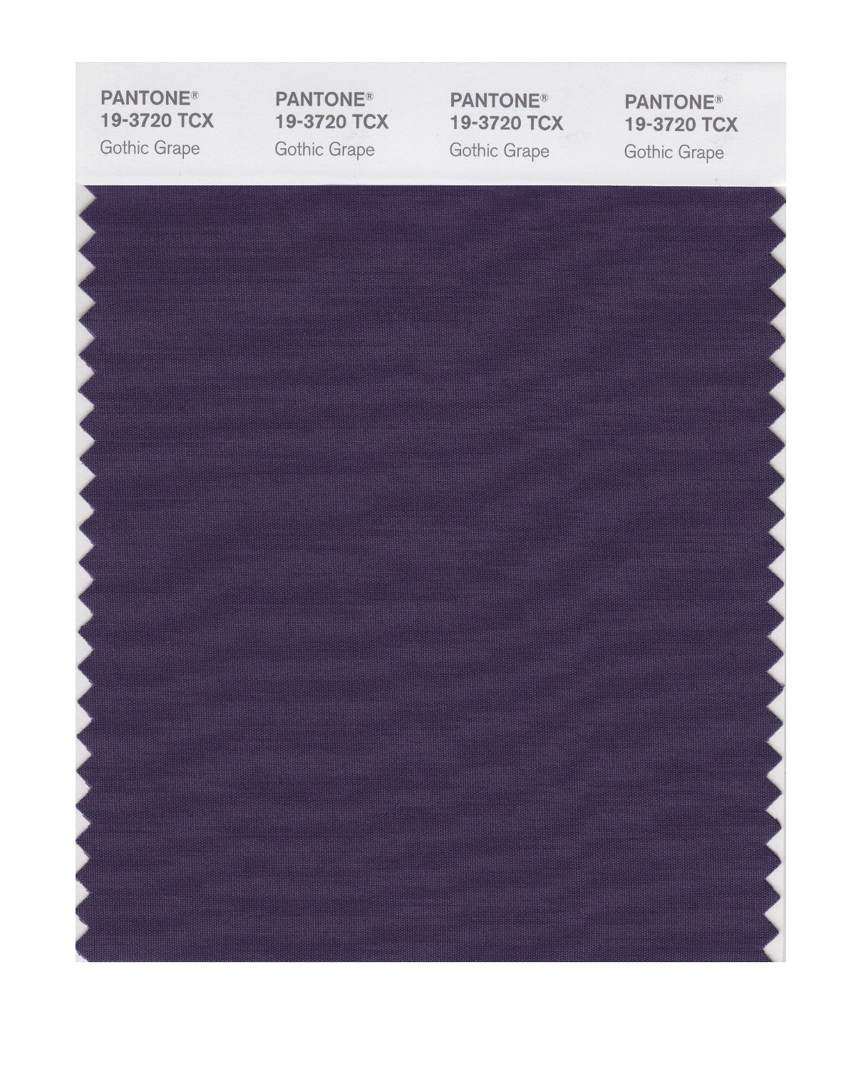 Pantone Smart Swatch 19-3720 Gothic Grape