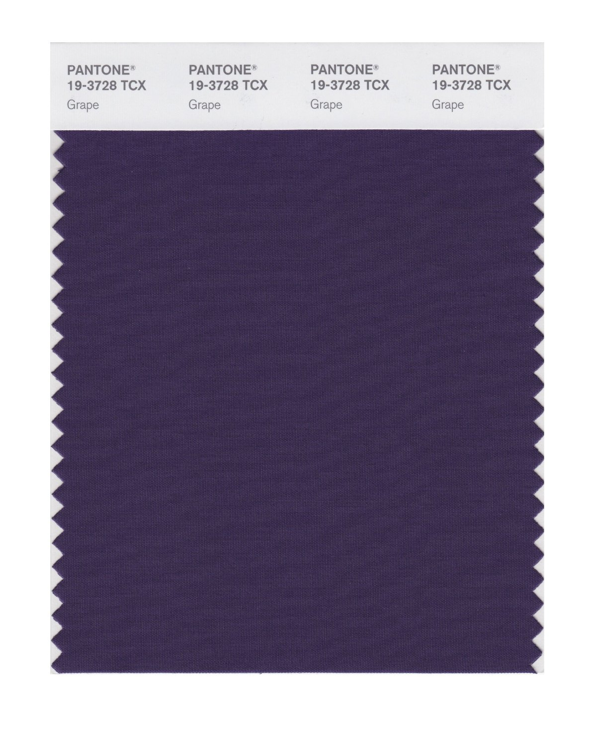 Pantone Smart Swatch 19-3728 Grape