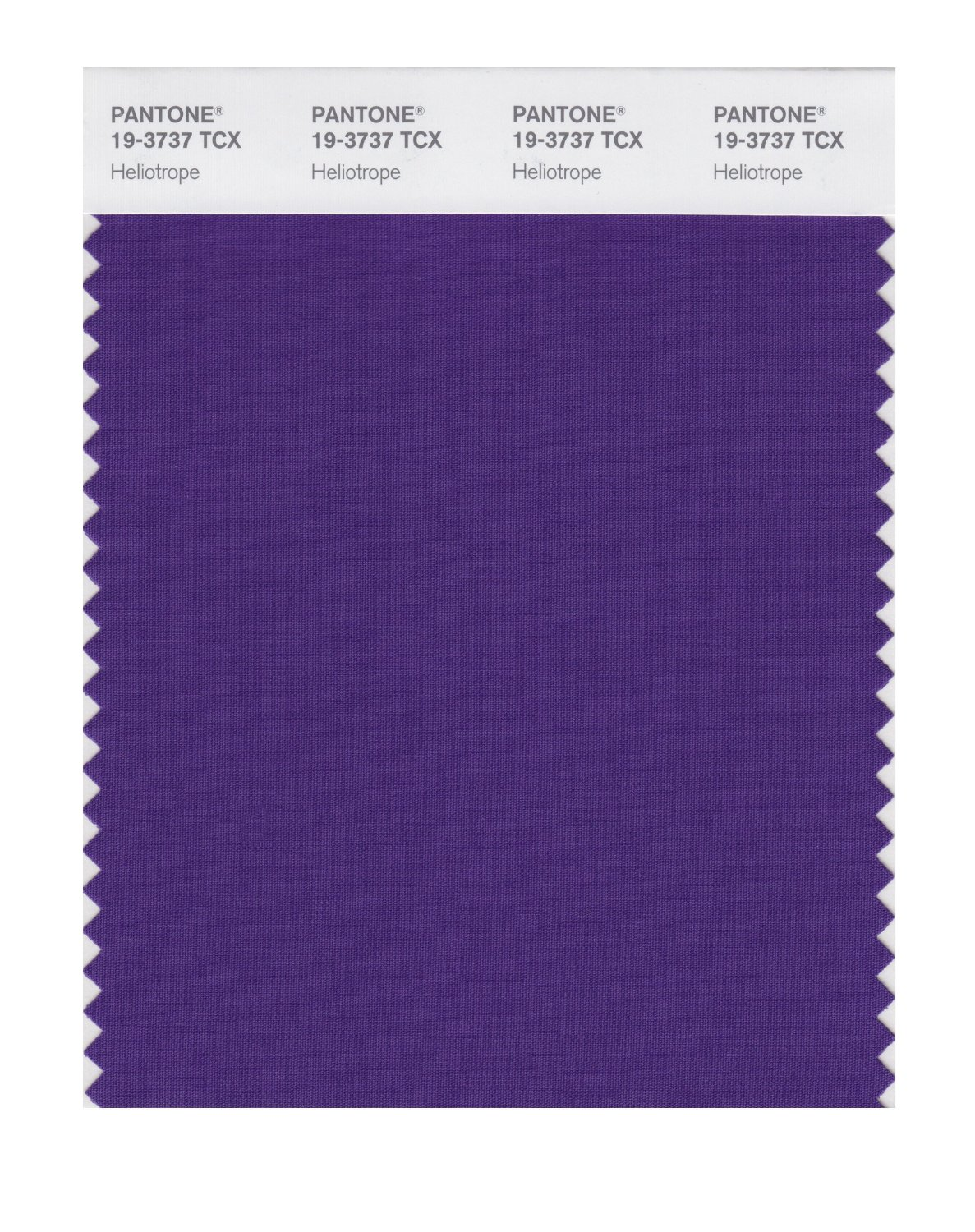 Pantone Smart Swatch 19-3737 Heliotrope