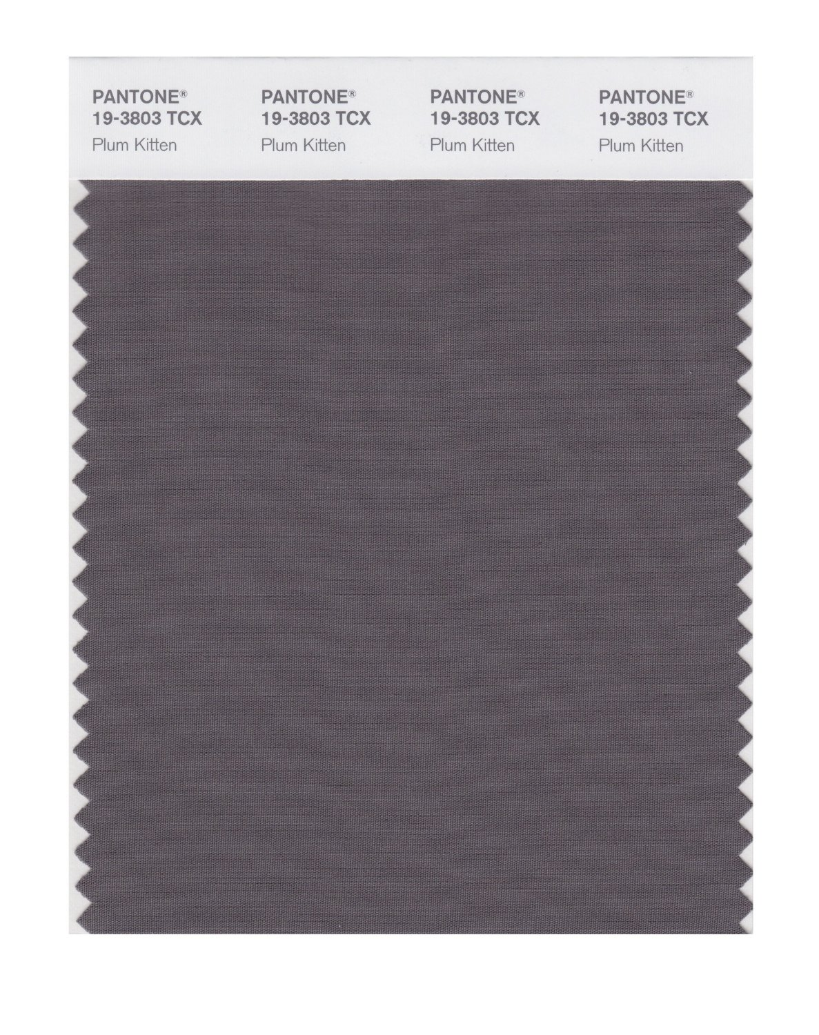 Pantone Smart Swatch 19-3803 Plum Kitten