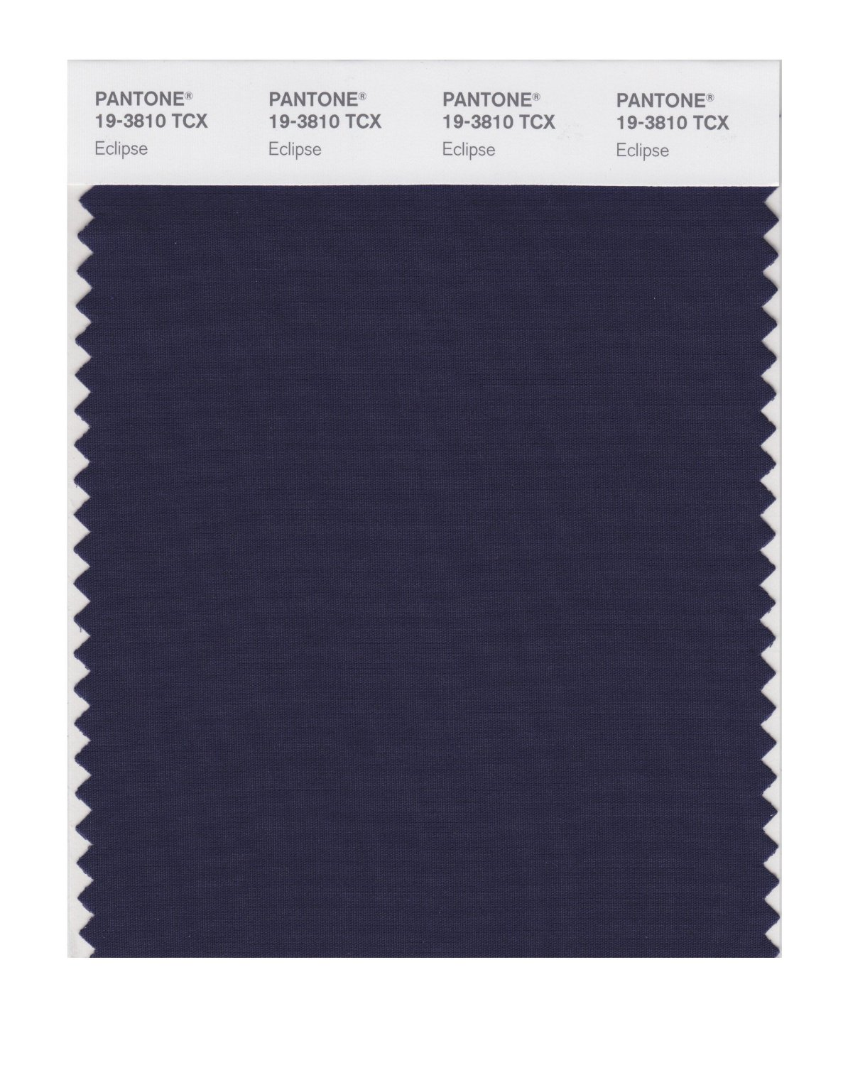 Pantone Smart Swatch 19-3810 Eclipse
