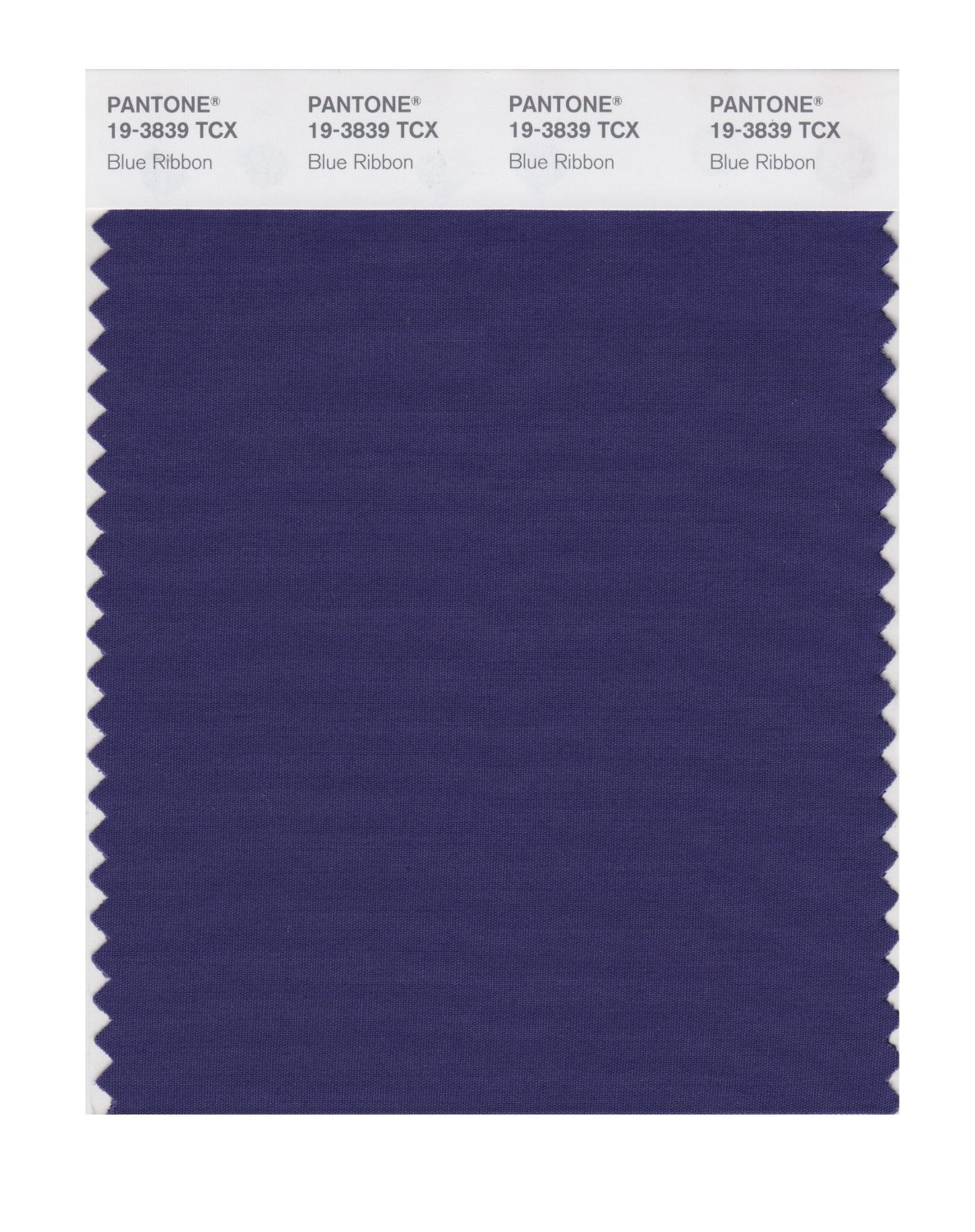 Pantone Smart Swatch 19-3839 Blue Ribbon