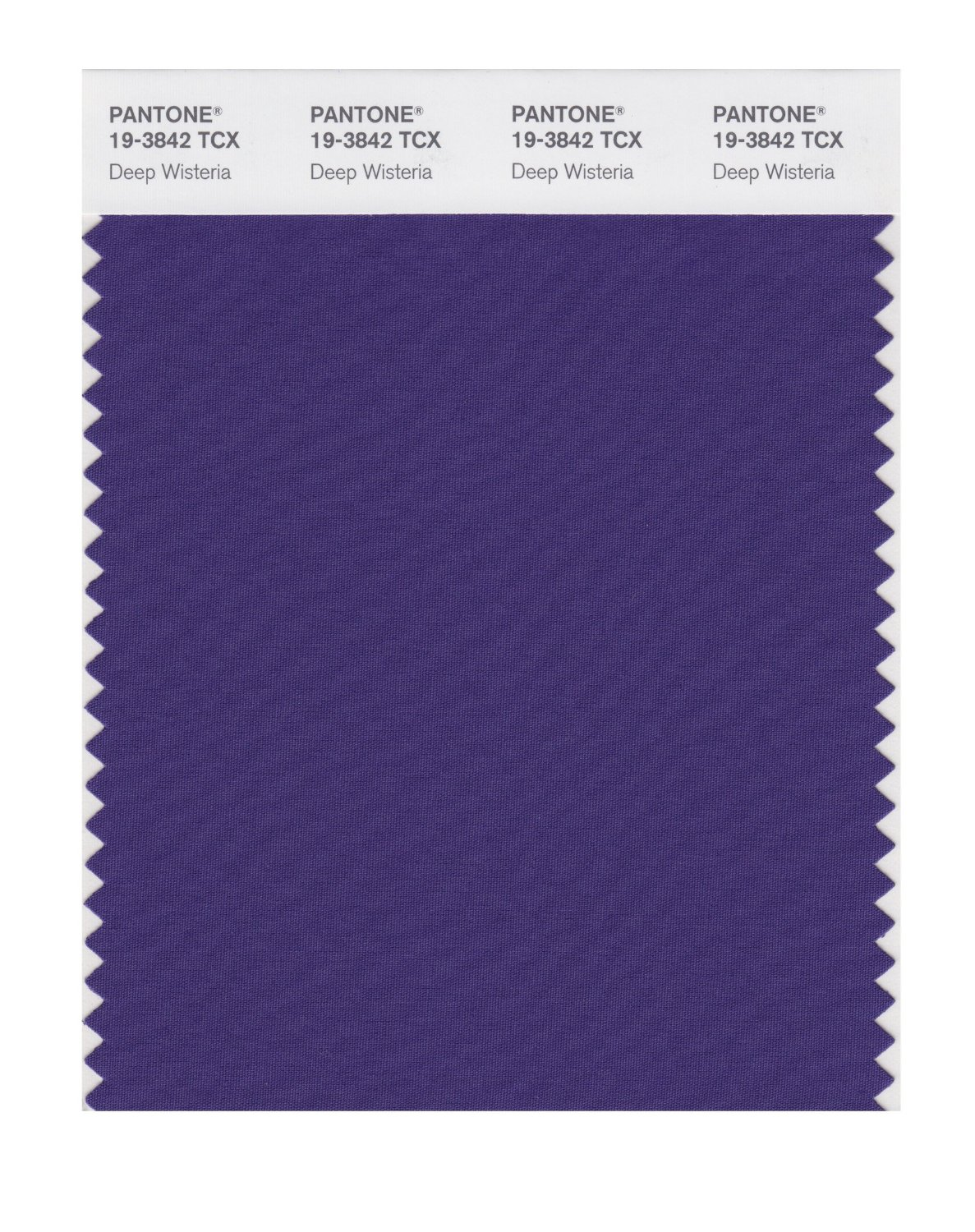 Pantone Smart Swatch 19-3842 Deep Wisteria