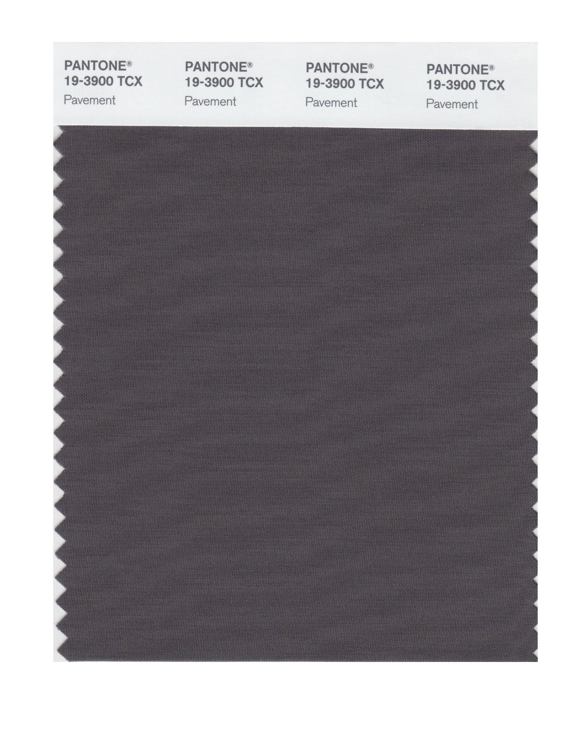 Pantone Smart Swatch 19-3900 Pavement
