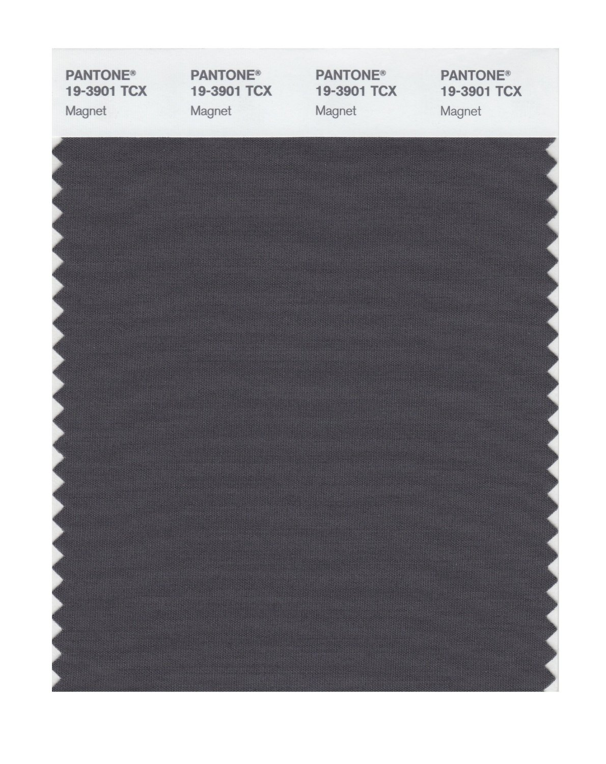 Pantone Smart Swatch 19-3901 Magnet