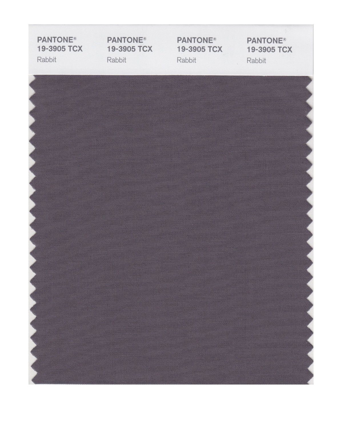 Pantone Smart Swatch 19-3905 Rabbit