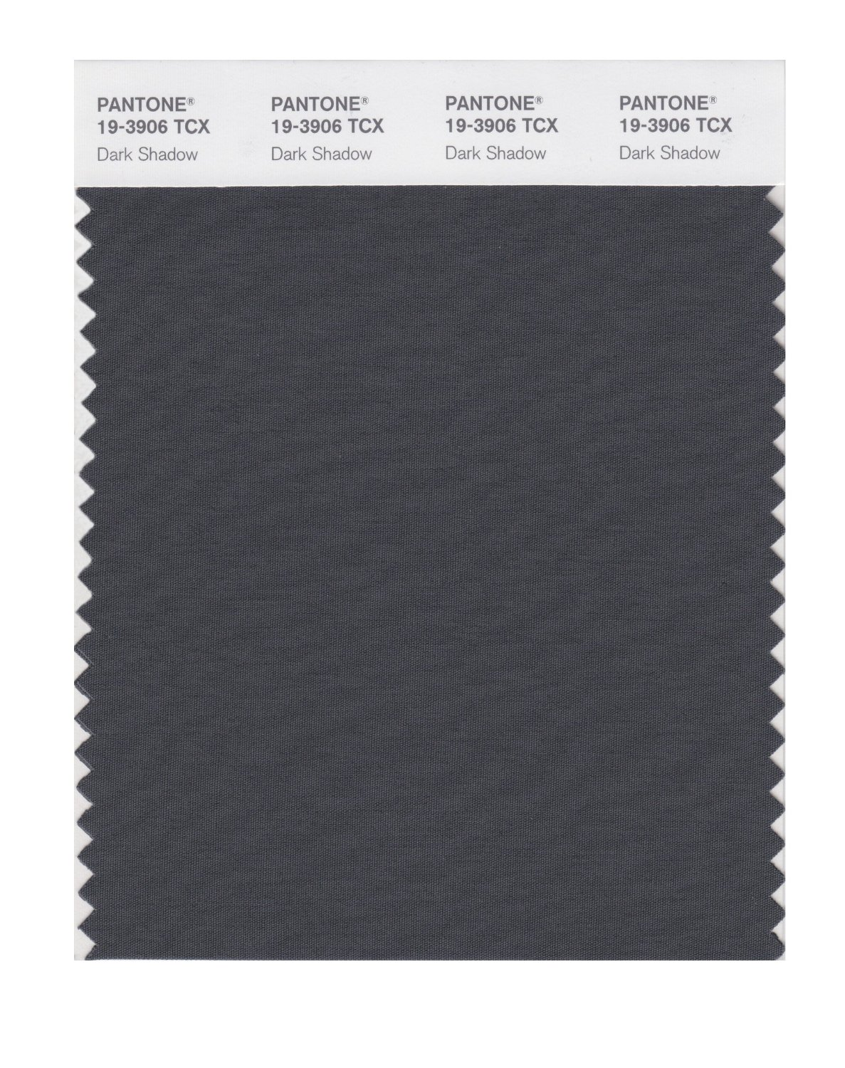 Pantone Smart Swatch 19-3906 Dark Shadow