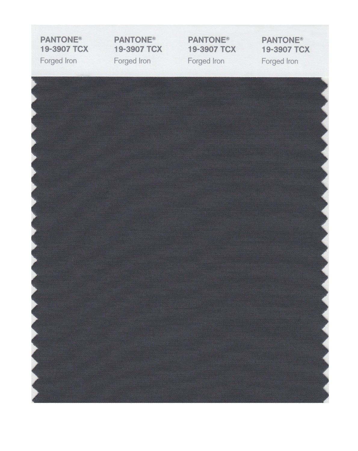 Pantone Smart Swatch 19-3907 Forged Iron