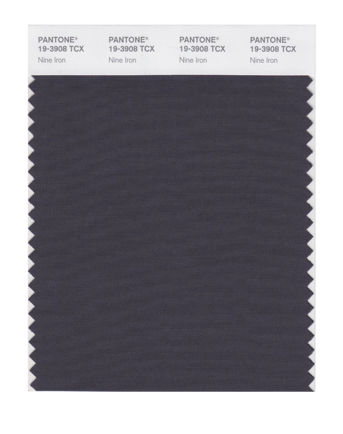 Pantone Smart Swatch 19-3908 Nine Iron