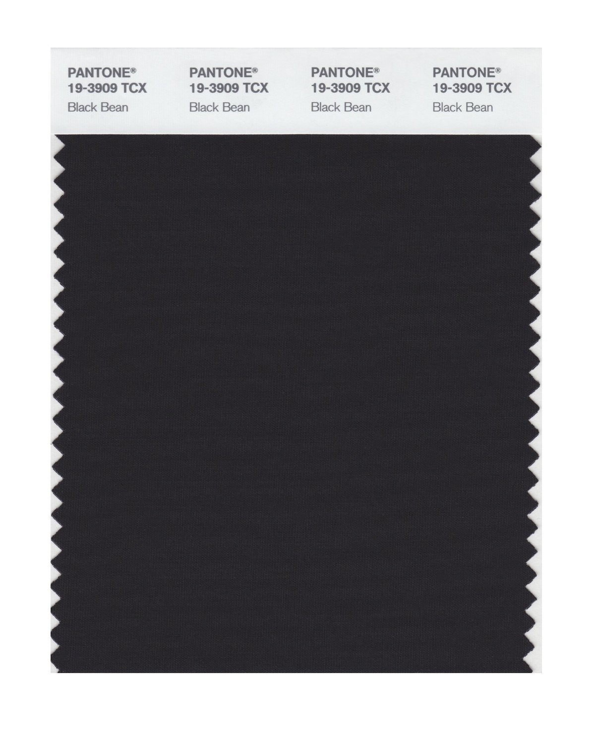 Pantone Smart Swatch 19-3909 Black Bean