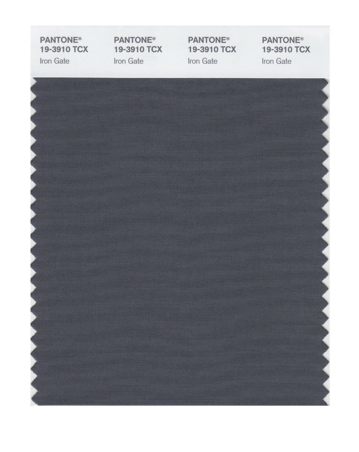 Pantone Smart Swatch 19-3910 Iron Gate