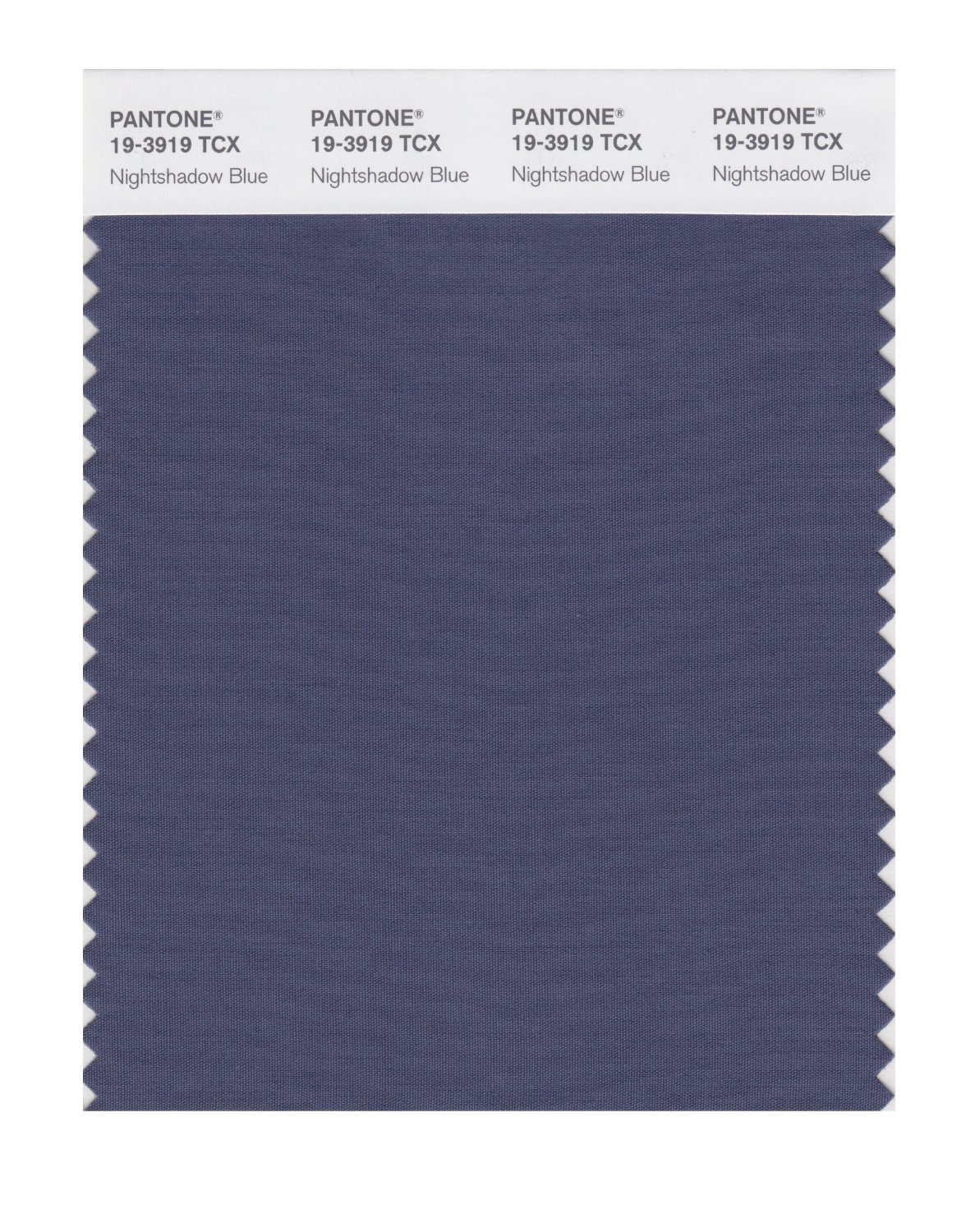 Pantone Smart Swatch 19-3919 Nightshadow Blue