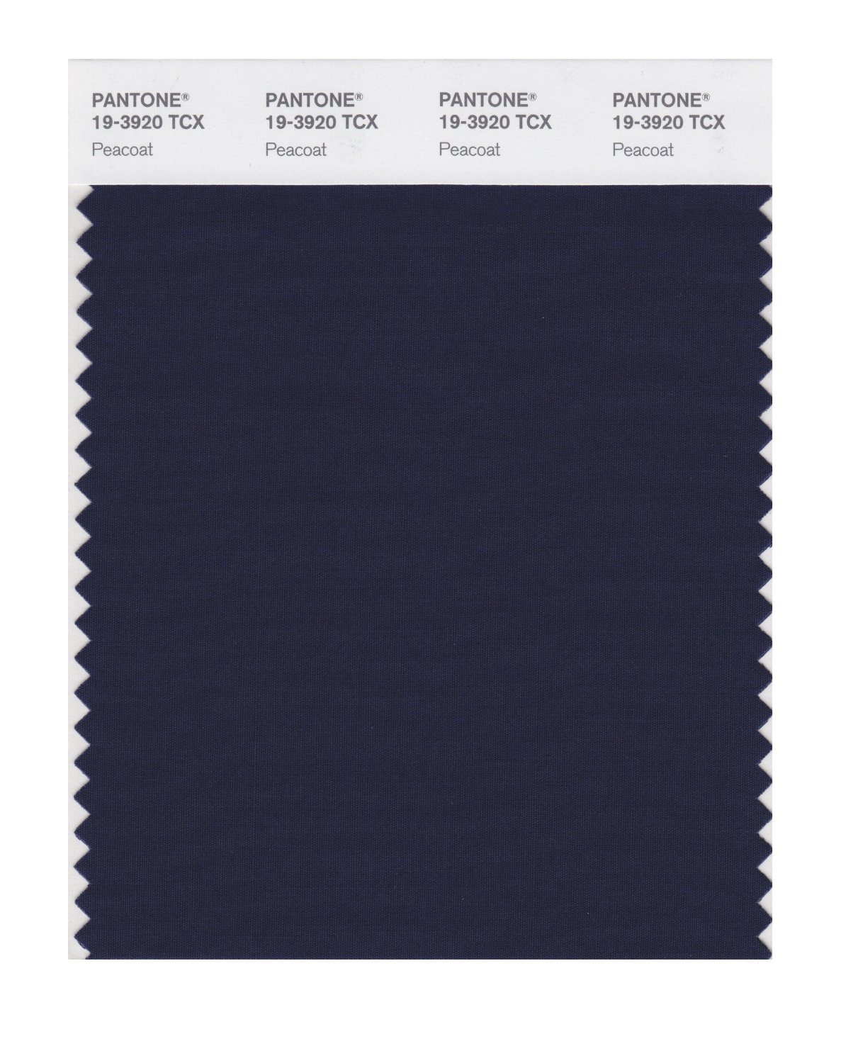 Pantone Smart Swatch 19-3920 Peacoat