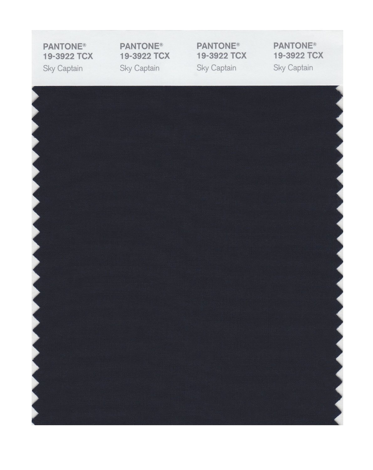 Pantone Smart Swatch 19-3922 Sky Captain