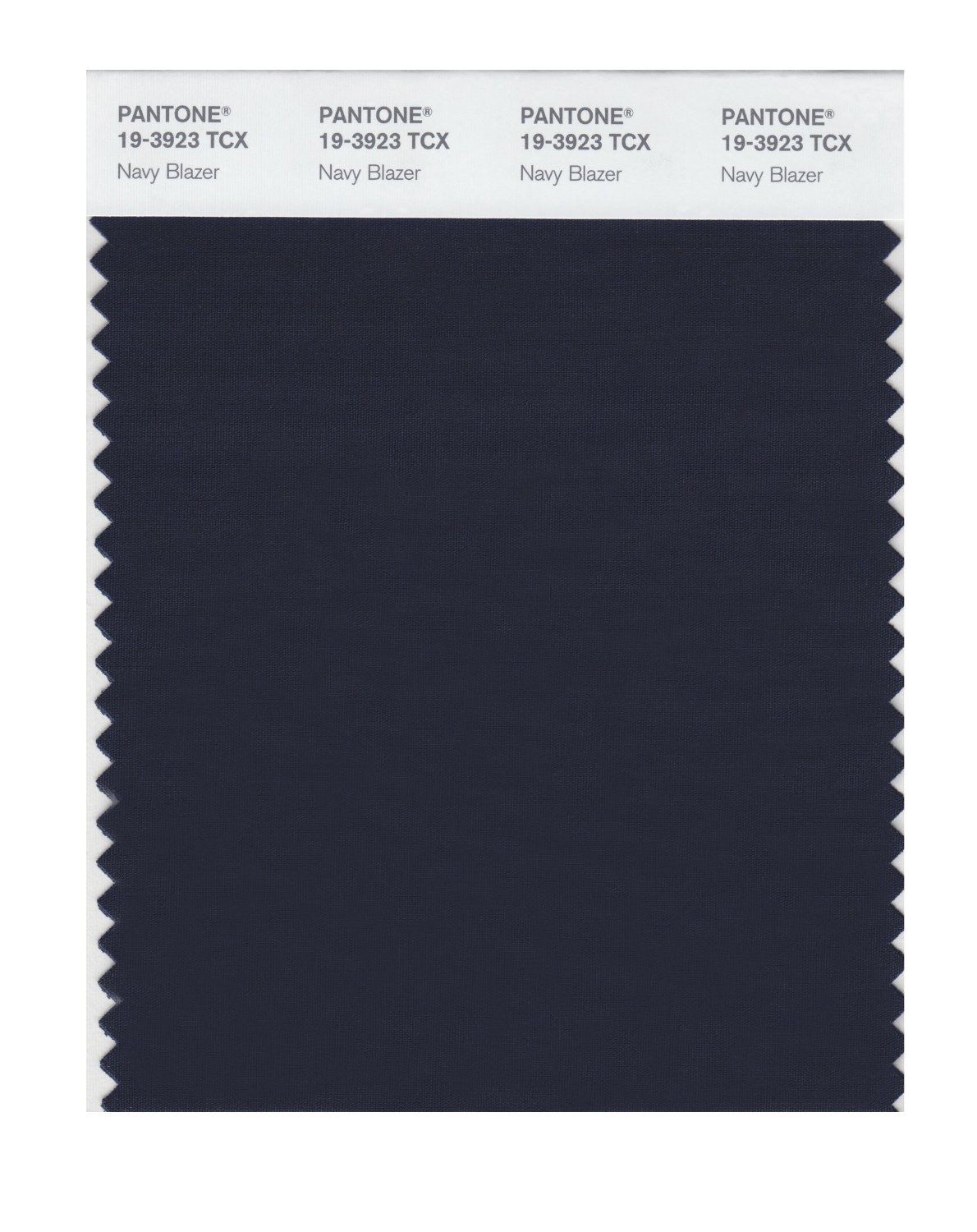 Pantone Smart Swatch 19-3923 Navy Blazer
