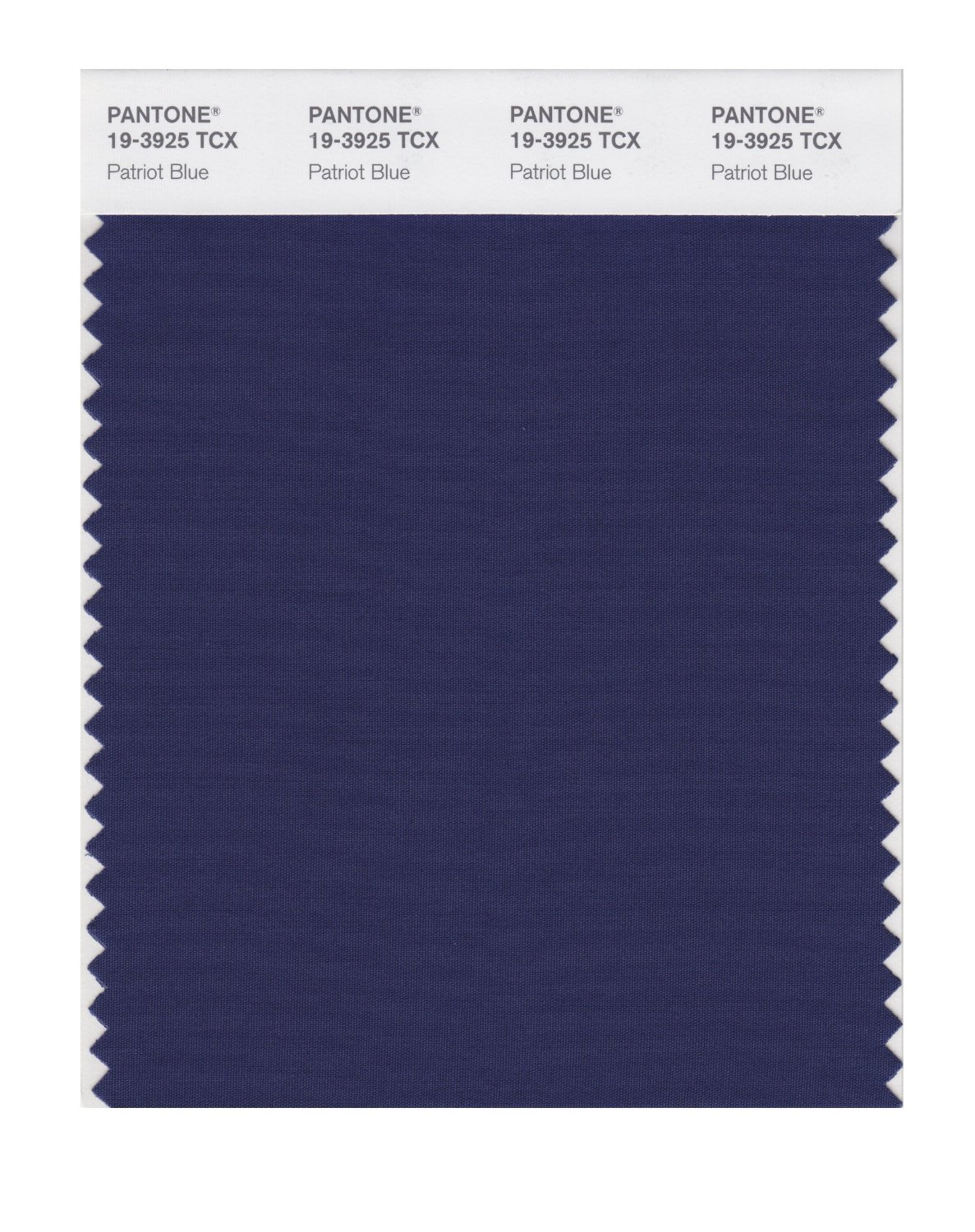 Pantone Smart Swatch 19-3925 Patriot Blue